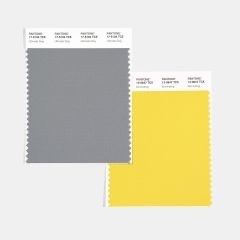 Color Trends 2021 - ultimate gray and illuminating