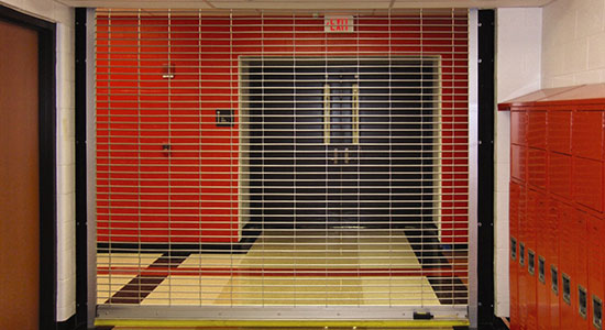 Public & Government Facility Doors